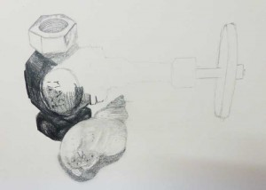 Detailed observational drawing - shell and metal