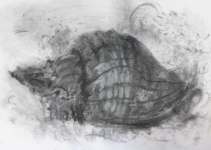 experimental drawing in charcoal dust